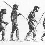 Evolution Vespa