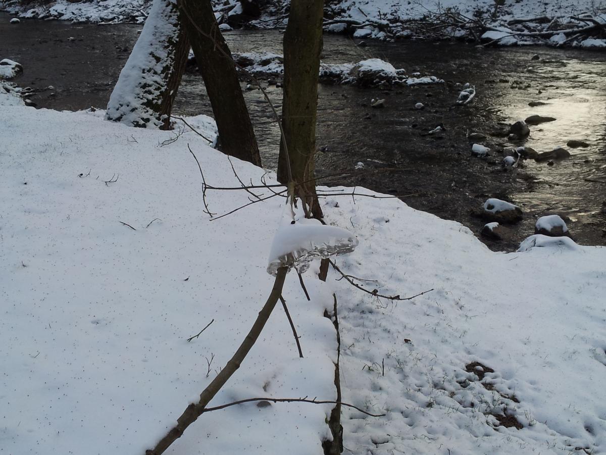 Kunst mit Eis: An einem Zweig ist dieses dubiose Kunstwerk entstanden.