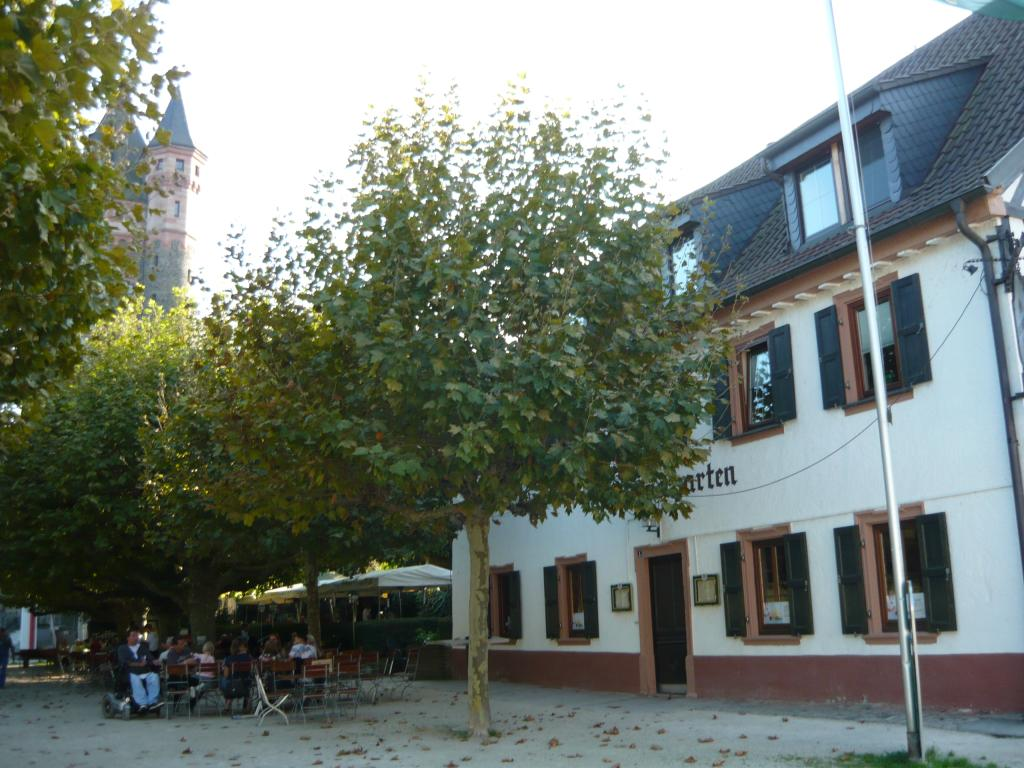 Kolbs Biergarten in Worms